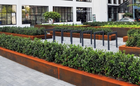 Trees in containers for urban environments?